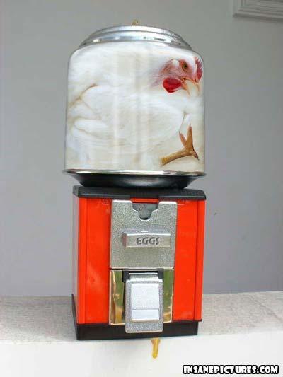 eggmachine.jpg